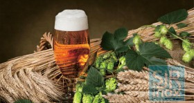 Производство вин и напитков